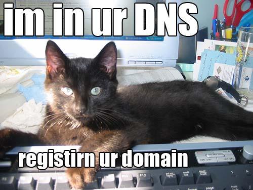 domainkitteh.jpg